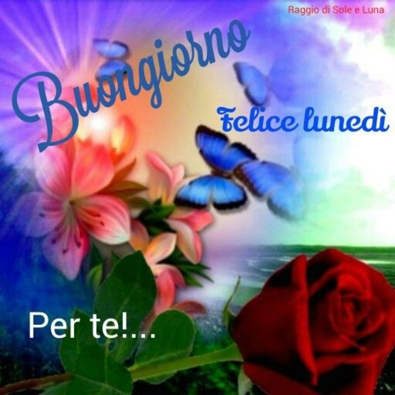 Buon Lunedì Amore Immagini 2 Immaginifacebookit