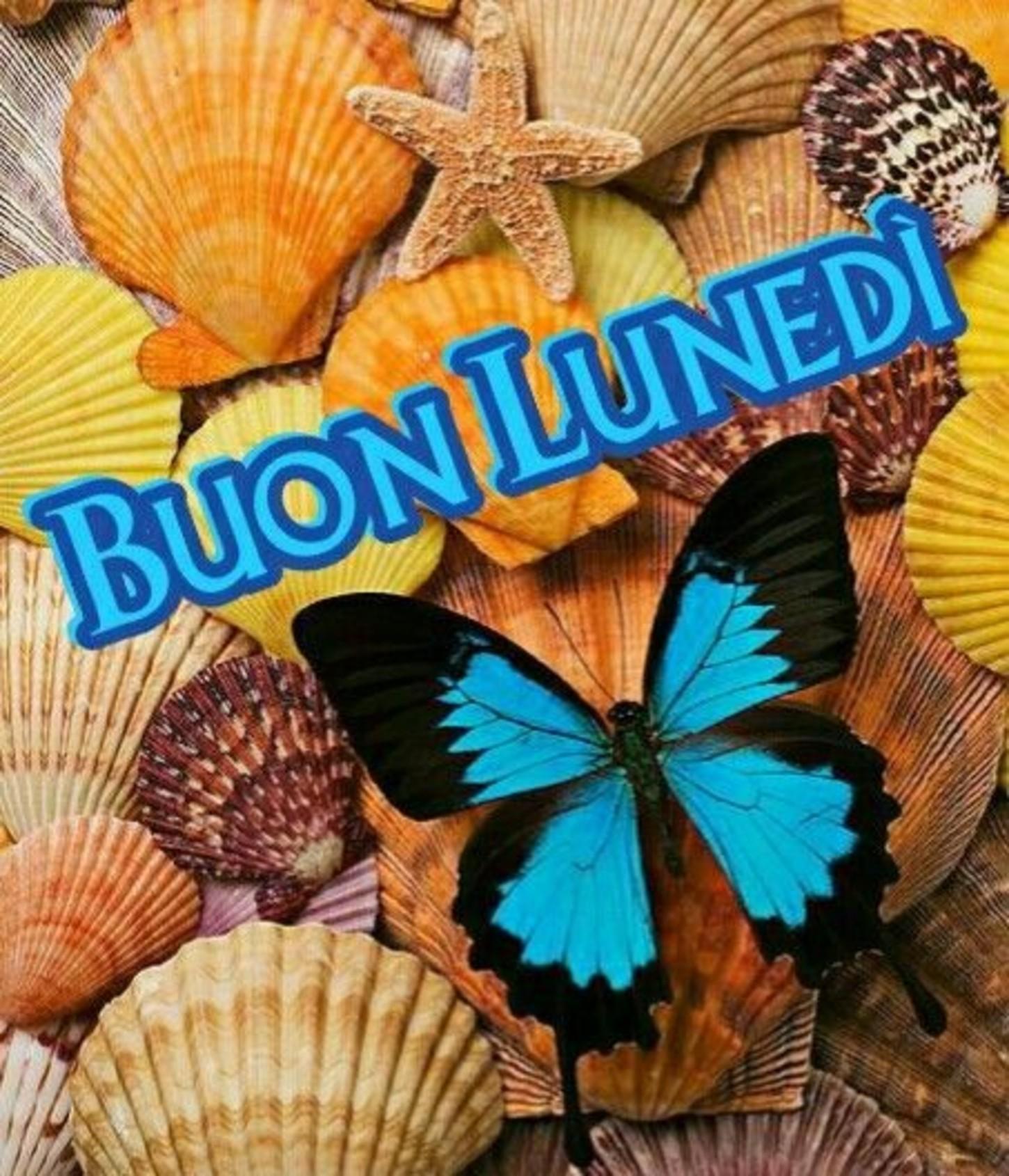 Buon Lunedì Farfalle Immaginifacebook It
