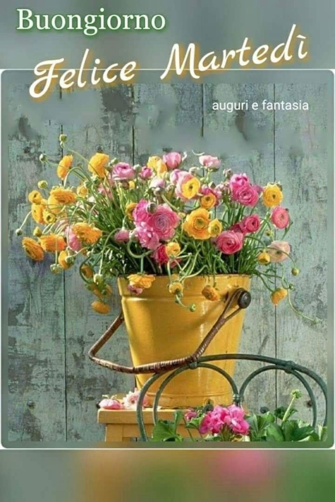 Buon Martedì A Tutti Gli Amici 3646 Immaginifacebookit
