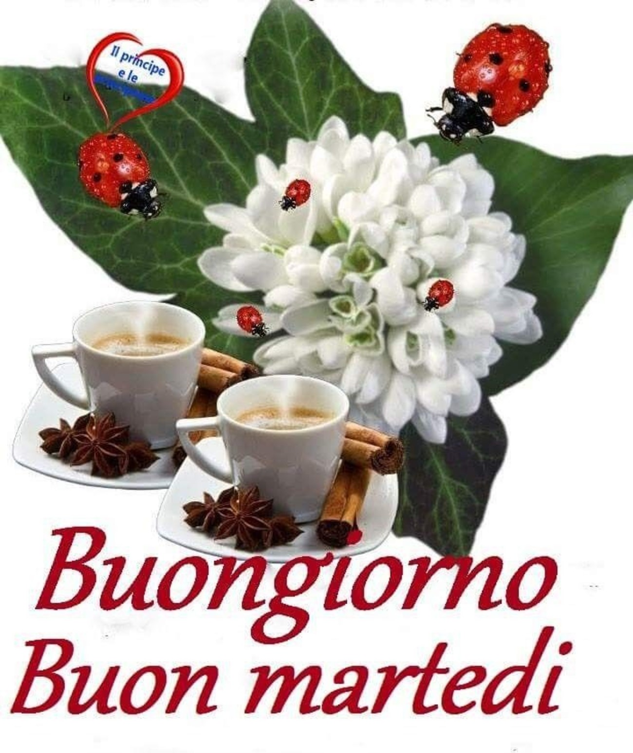 Buon Martedì Amici 6812 Immaginifacebook It
