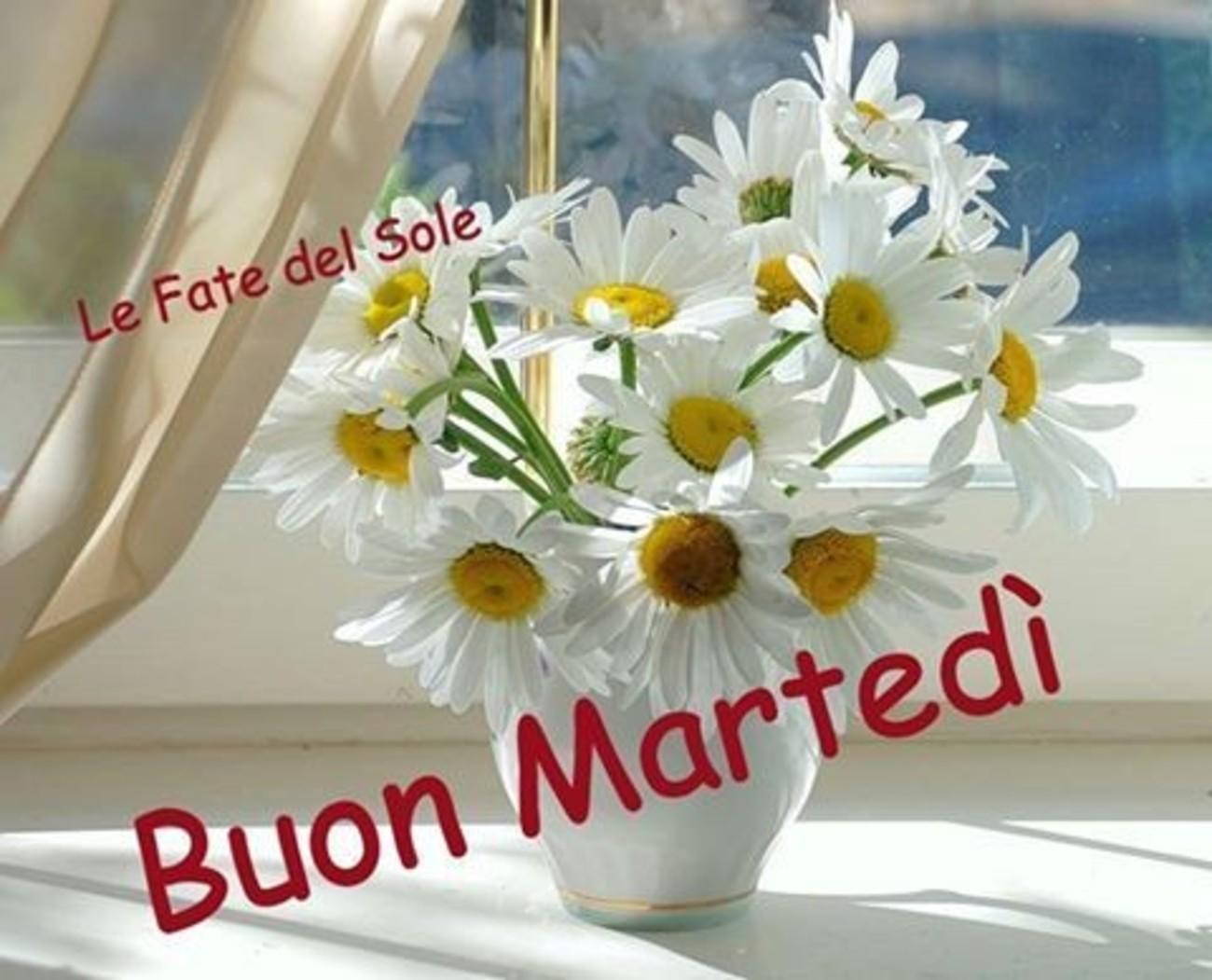 Buon Martedì coi fiori 2