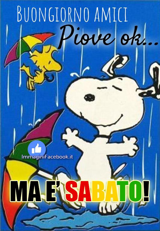 Buon Sabato piovoso pioggia immagini nuove