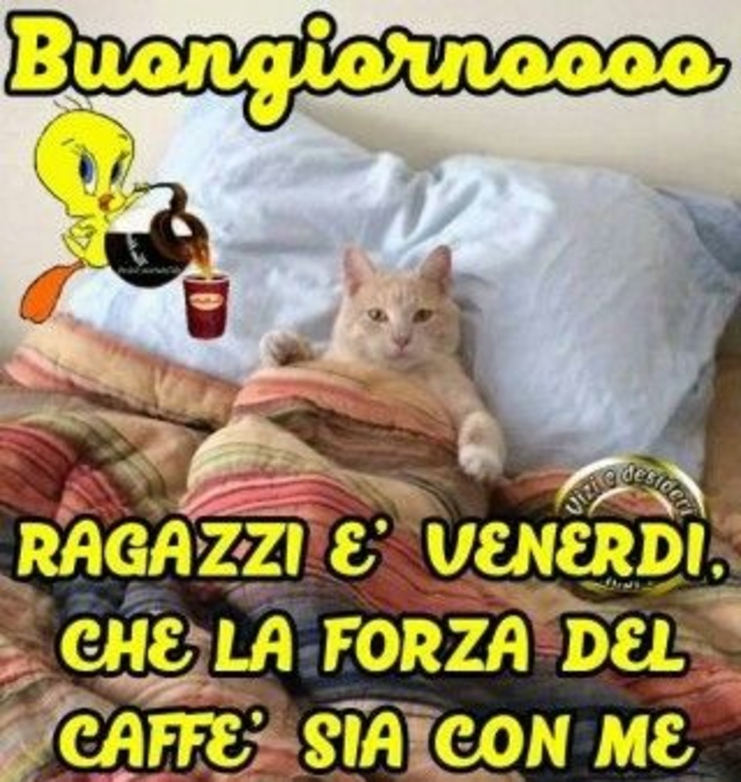 Buon Venerdì Divertenti Immaginifacebook It