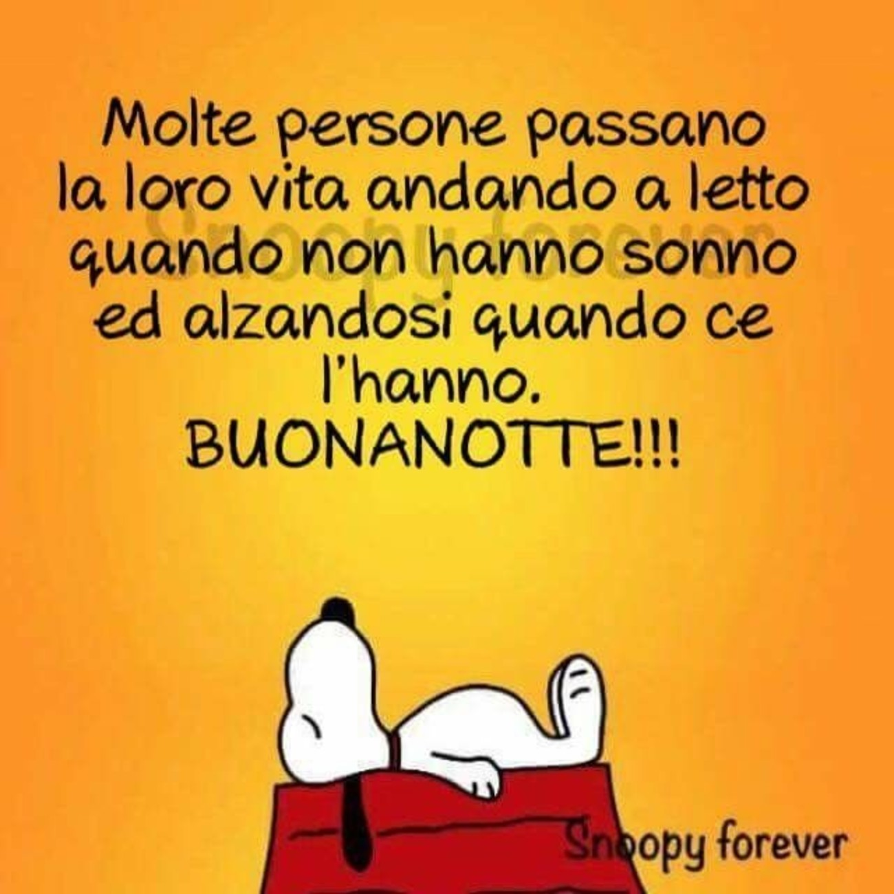 Snoopy Archives Pagina 33 Di 37 Immaginifacebook It