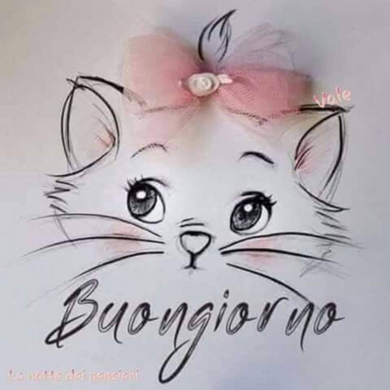 Buongiorno Coi Gattini 5 Immaginifacebook It