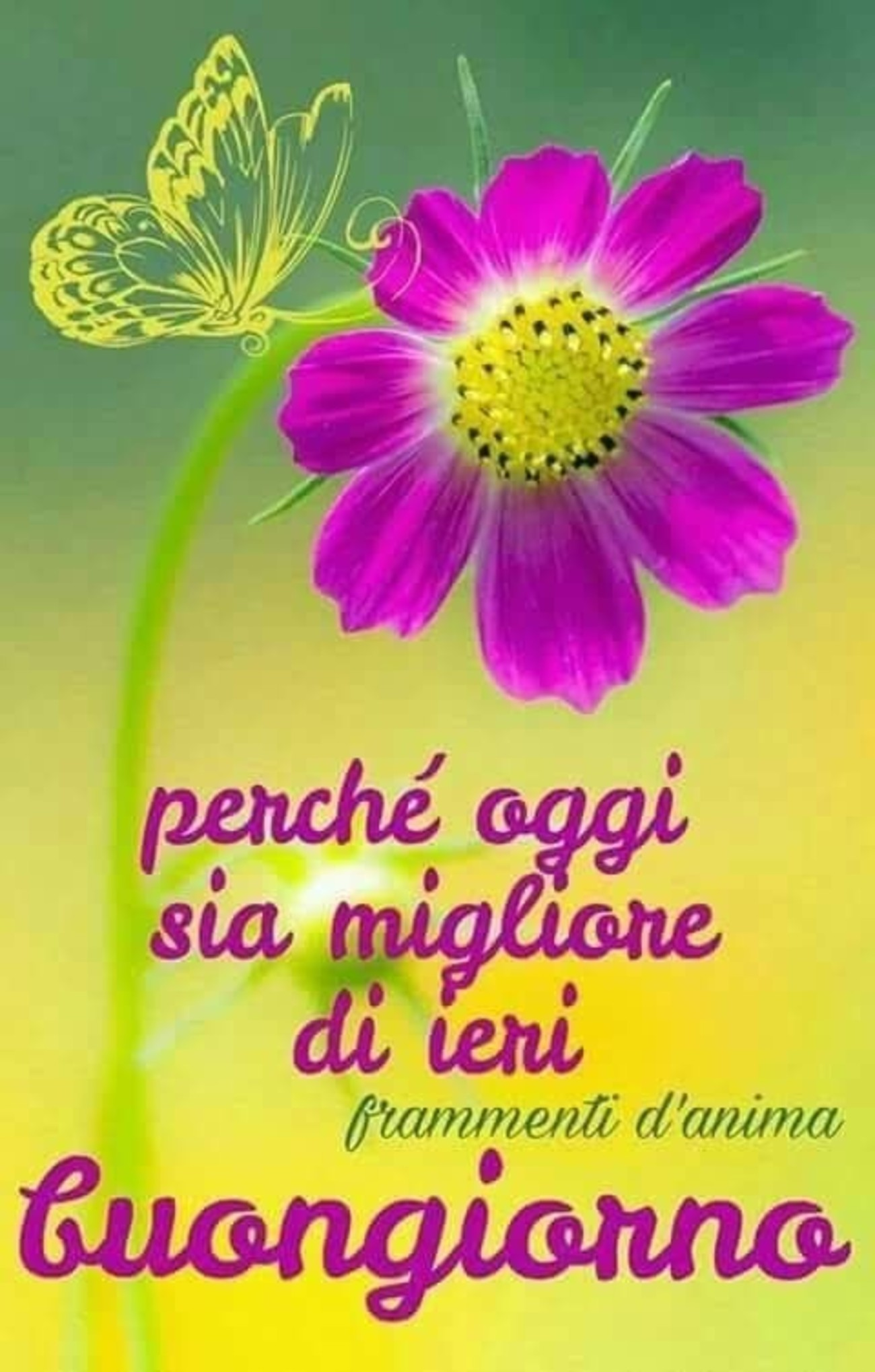 Buongiorno foto coi fiori 2 for Foto immagini buongiorno
