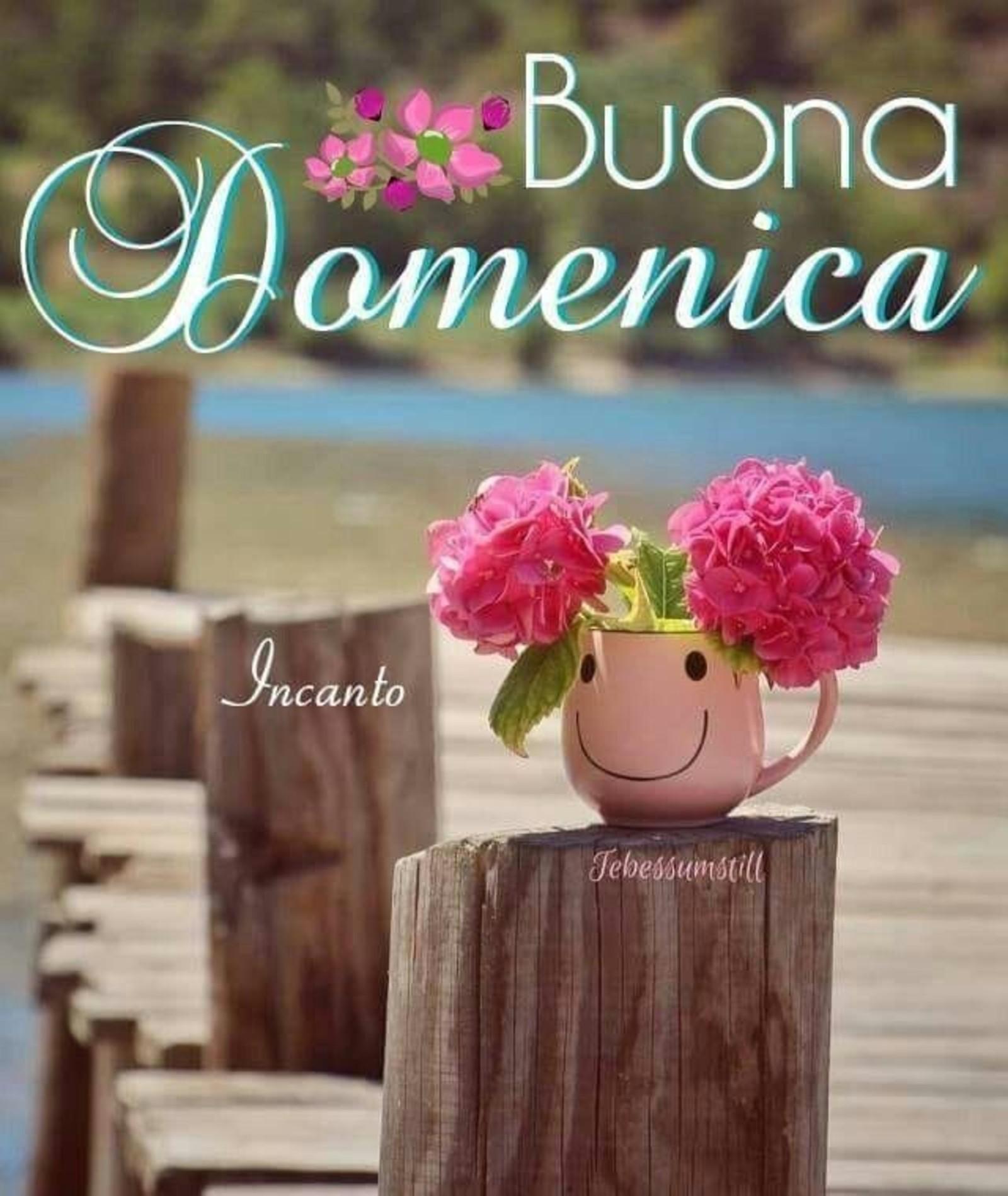 Frasi E Immagini Buona Domenica 8057 Immaginifacebook It