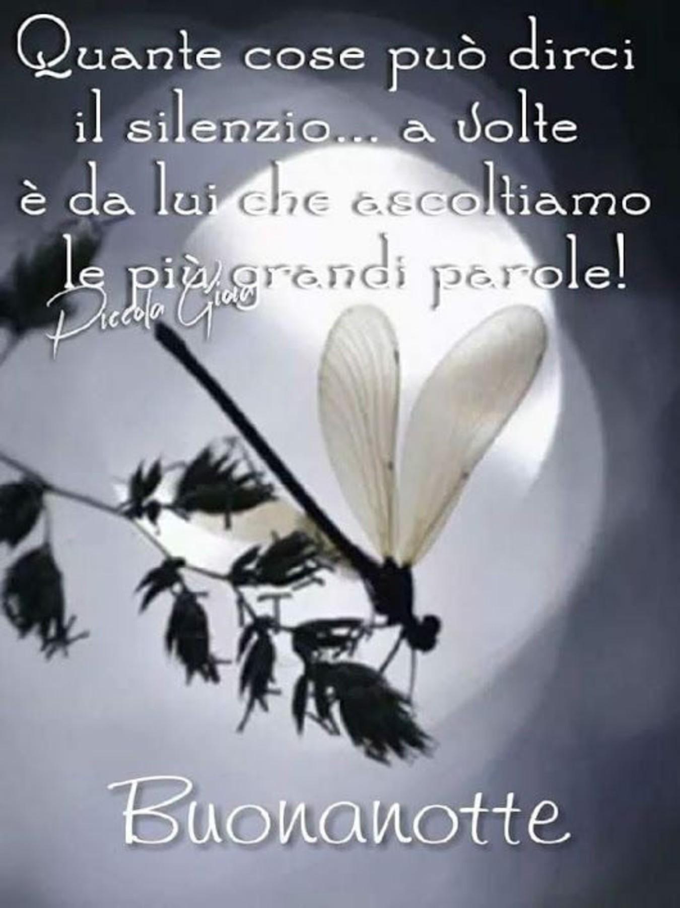 Buonanotte Buon Riposo Archives Immaginifacebook It