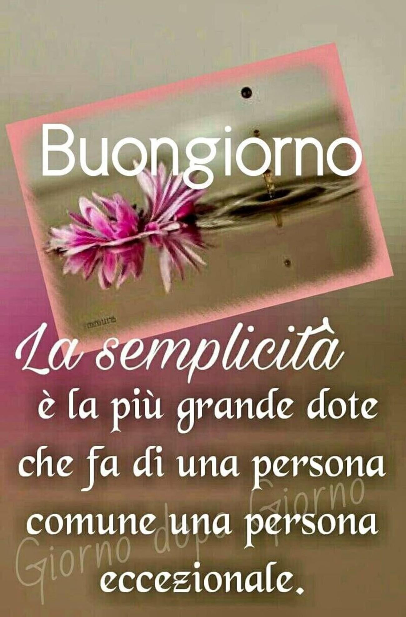 Immagini Con Frasi Belle Buongiorno 10 Immaginifacebook It