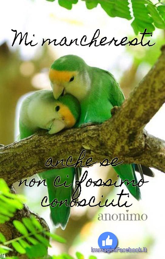 Le citazioni d'amore più belle