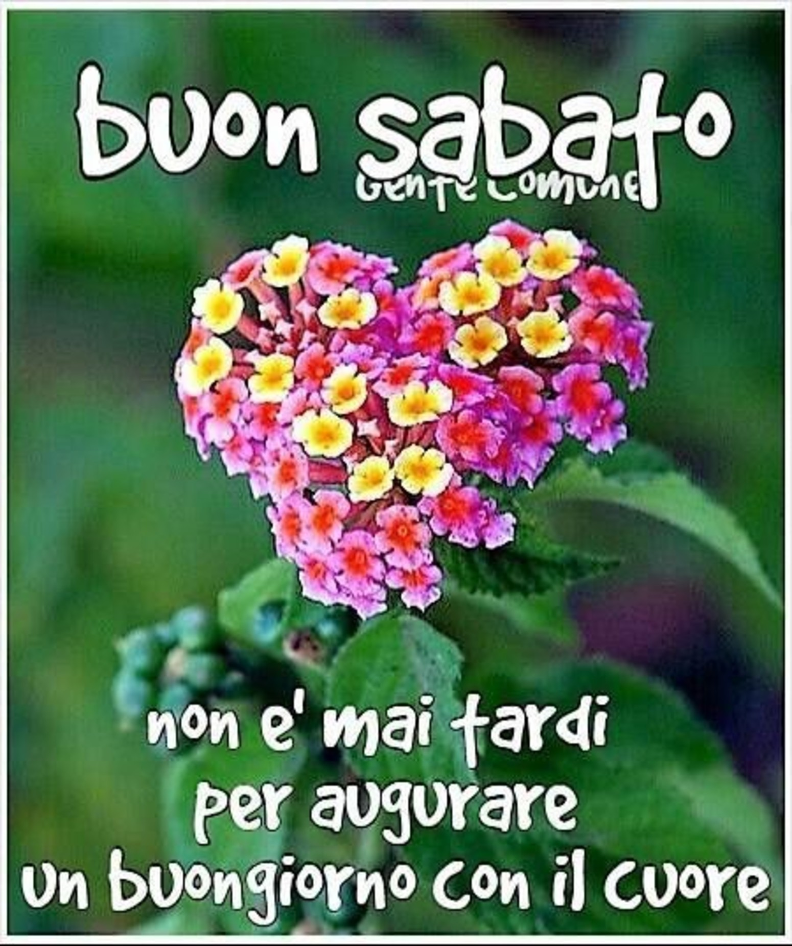 Per Facebook immagini Buon Sabato 5538