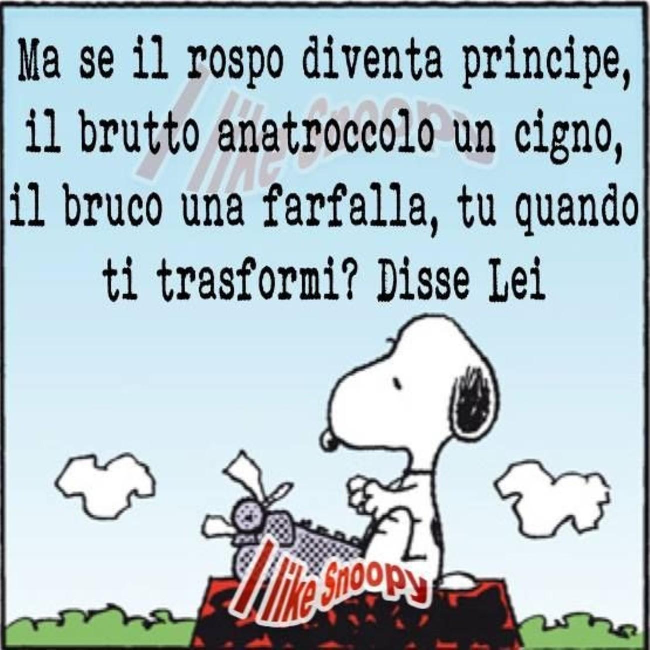 Snoopy Pinterest 6681