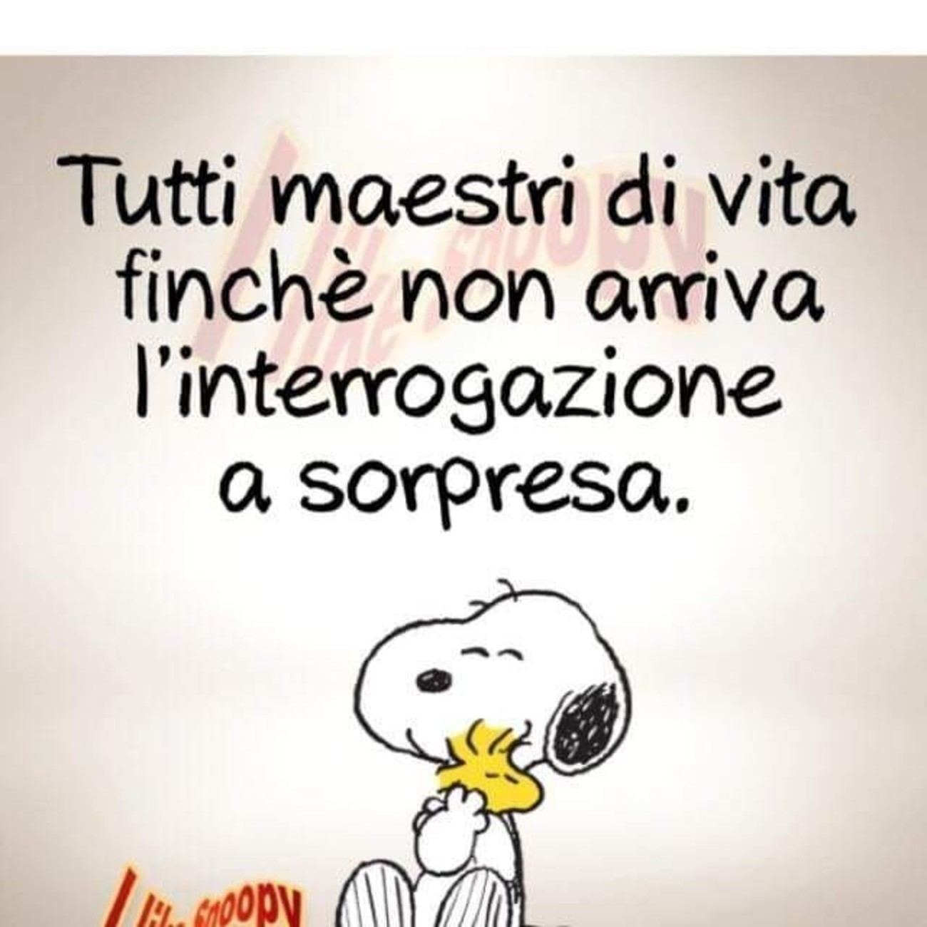 Snoopy E La Vita Immagini Belle Immaginifacebook It