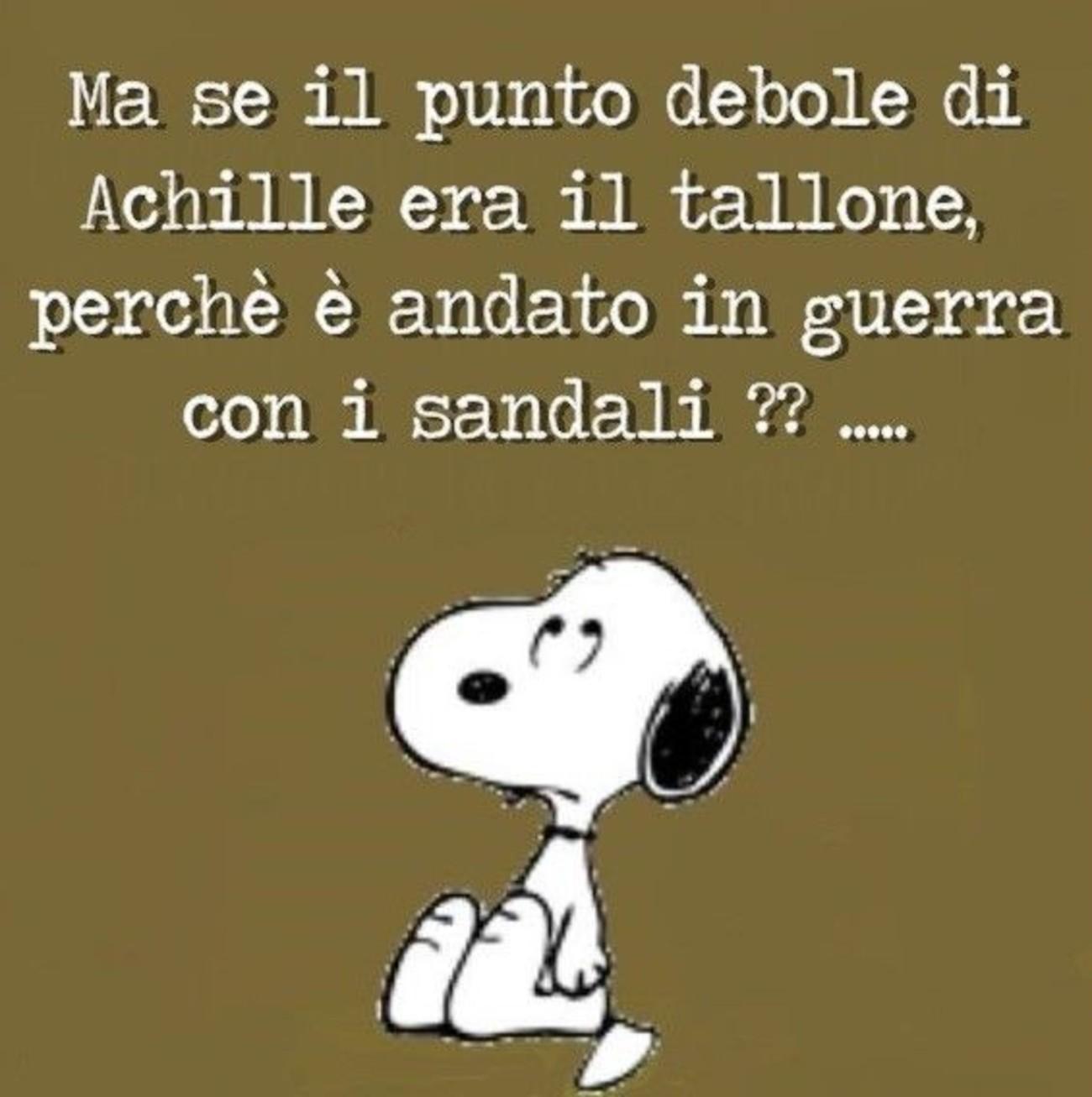 Snoopy Frasi Immaginifacebook It
