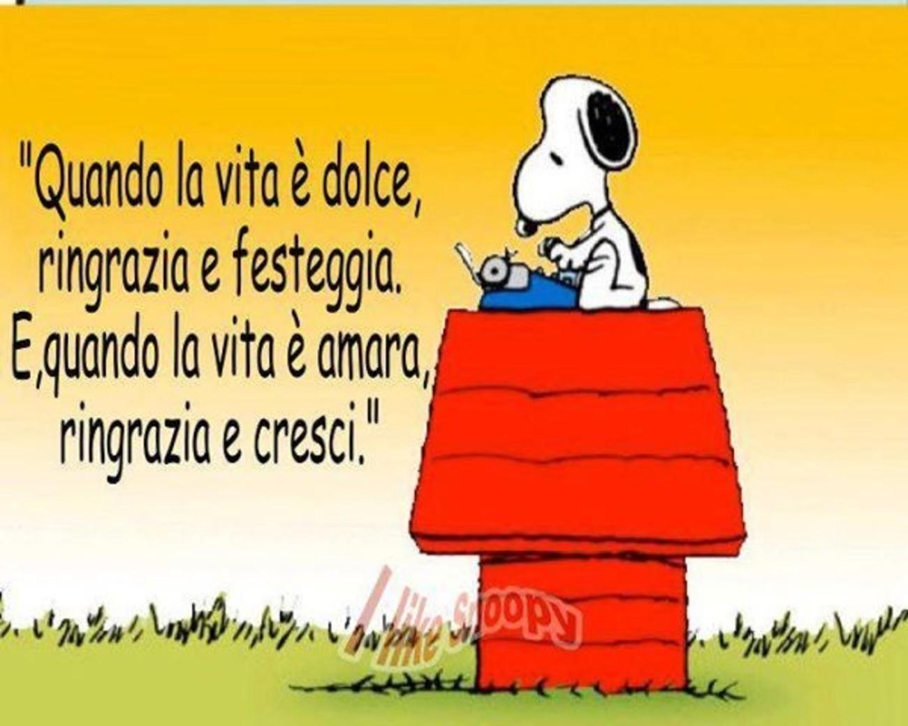 Snoopy immagini con frasi archives for Immagini snoopy gratis