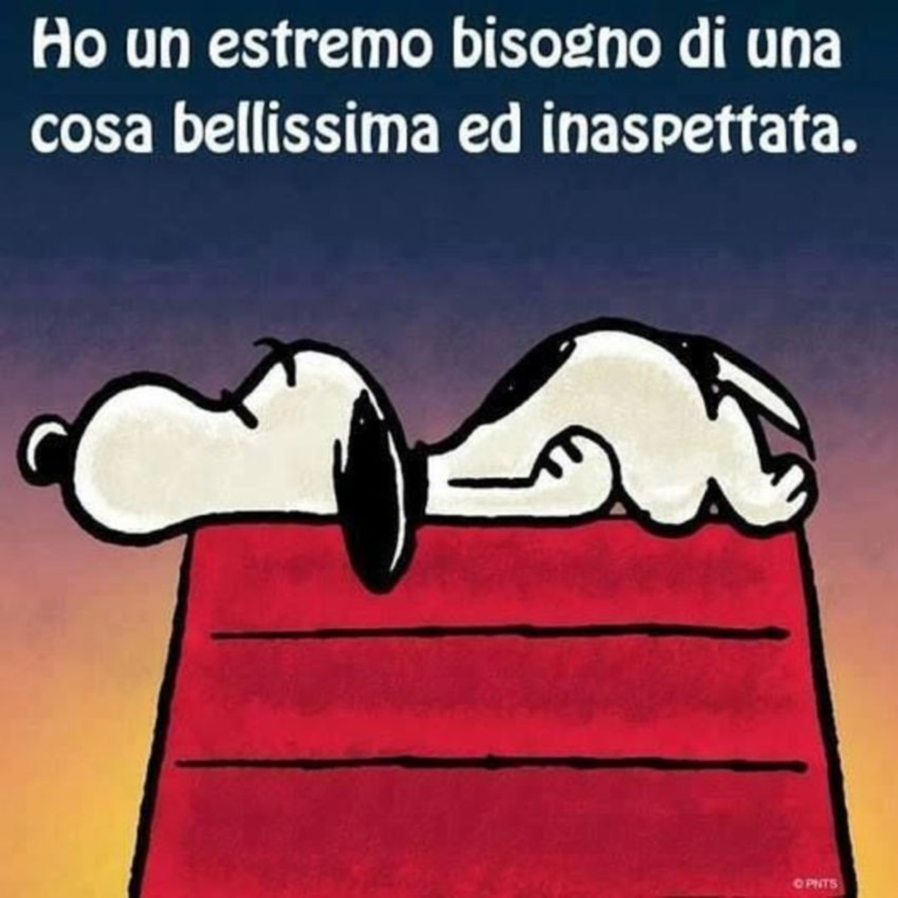 Snoopy vignette 6565