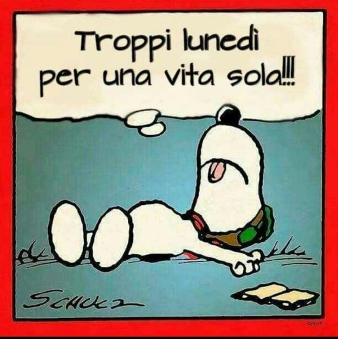 Troppi Lunedì per una vita sola Snoopy