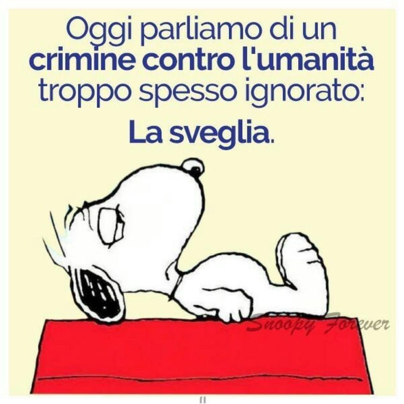 Vignette con Snoopy 3746