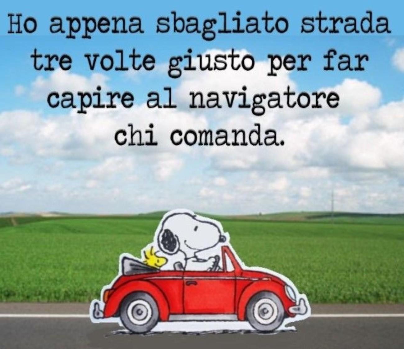 Vignette con Snoopy 376