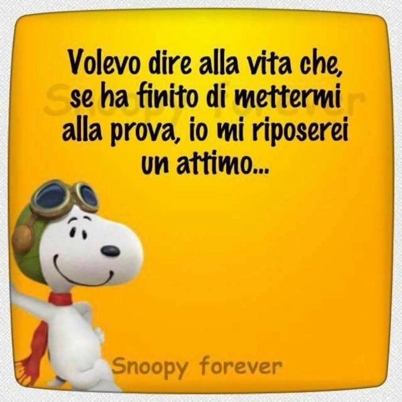 Vignette con Snoopy 3811