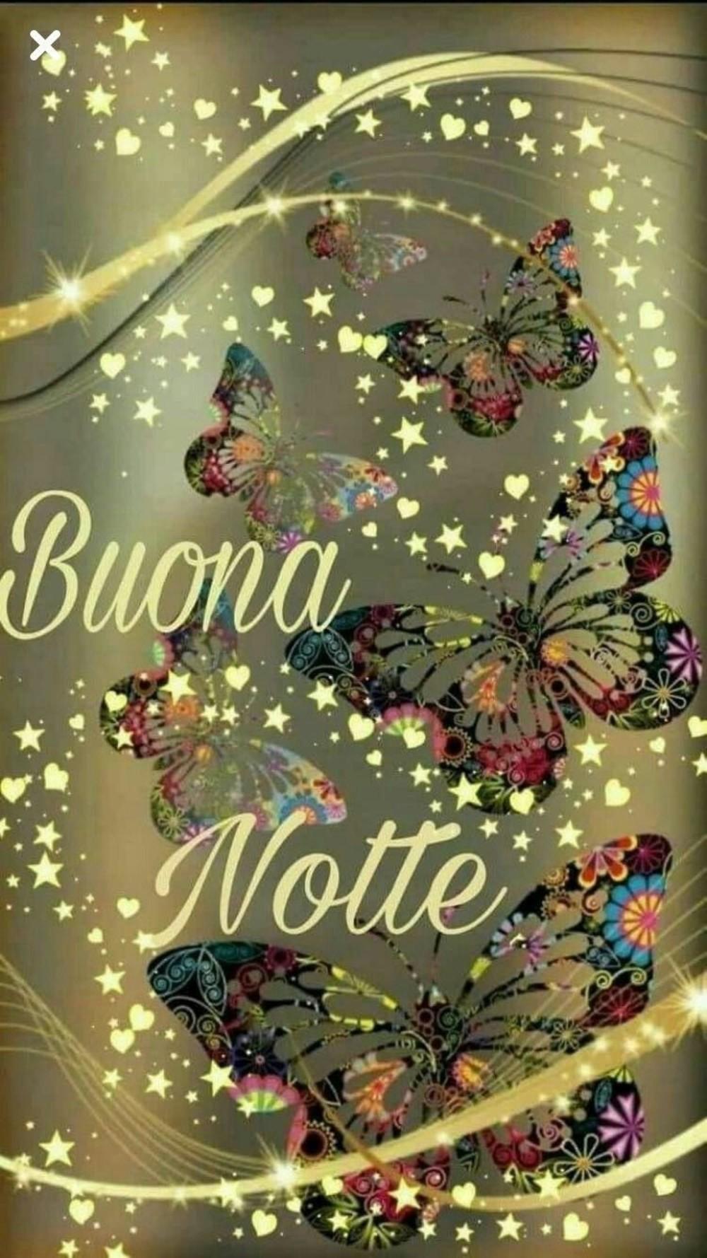Buona Notte 10491