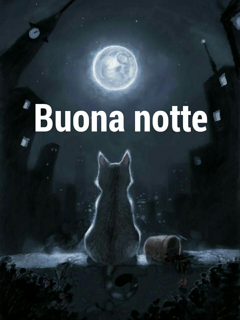 Buona Notte 10593